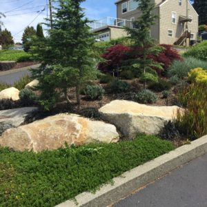 landscaping-project-12